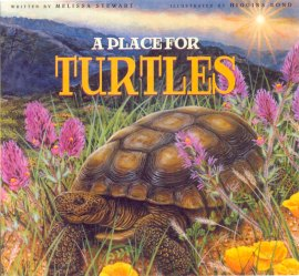 Turtle Cover